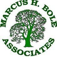 Marcus Boyle